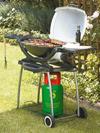 Weber Q200 Gas Barbecue