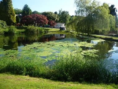 Norton around Lake