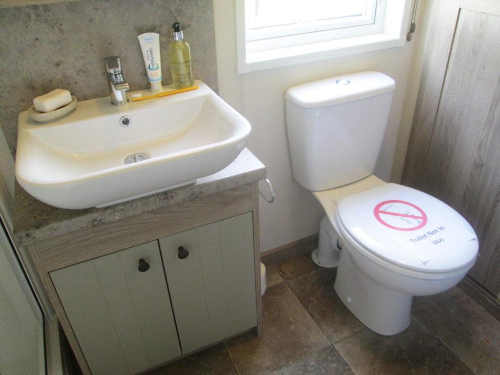 ABI Beaumont shower-room handbasin and toilet